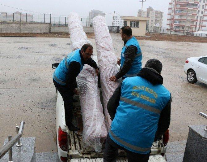 İbadethanelerin Halı İhtiyacını Haliliye Belediyesi Karşıladı