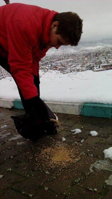Karda Doğaya Yem Bıraktılar