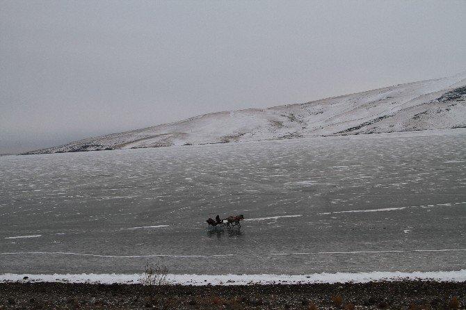 Ardahan'ı Soğuk Vurdu