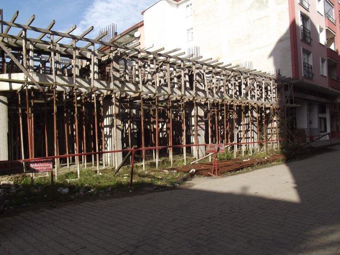 Tek bir çivi bile çakılmayan inşaatta söğüt ağacı büyüdü