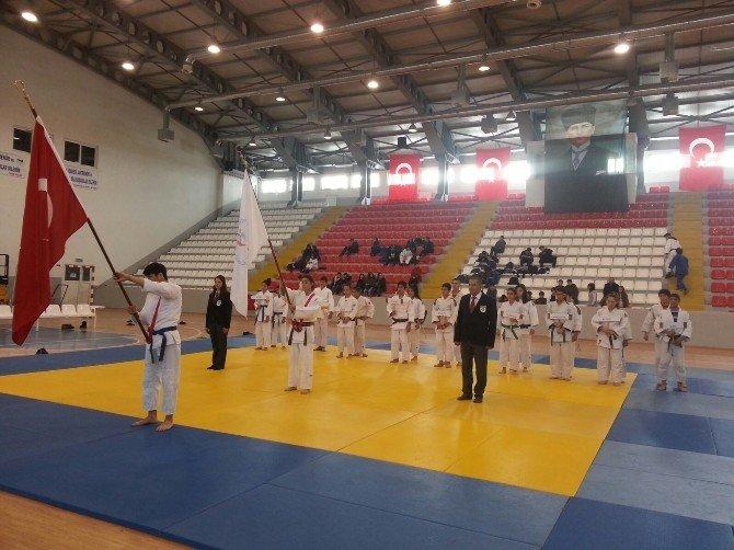 Analig Judo Müsabakalarında Van Rüzgârı