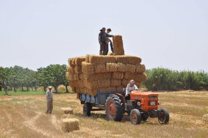 Söke Ziraat Odası Başkanı Kocabaş: KDV indirimi çiftçi ve üreticiye yansımadı