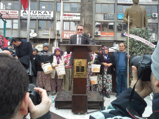 Edremit Zeytin Hasat Sonu Şenliği düzenlendi