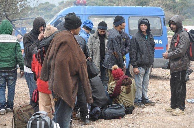 Çanakkale'de Bir Günde Bin 317 Kaçak Yakalandı