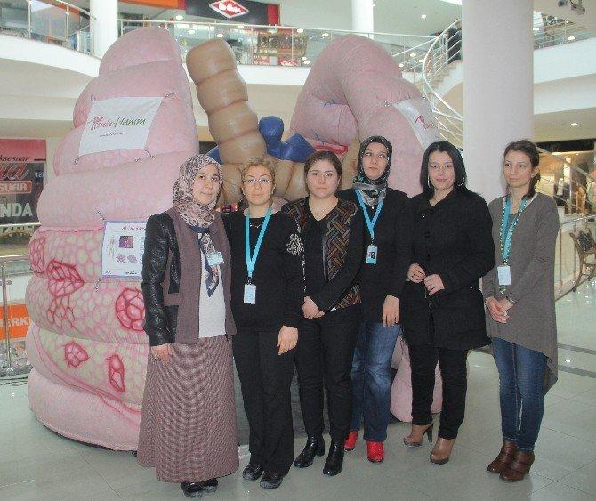 'Koca Ciğer' Elazığ'da Sergilendi