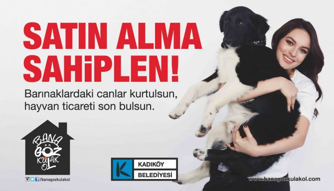 Ünlülerden 14 Şubat mesajı: Sevgilinize hayvan satın almayın!