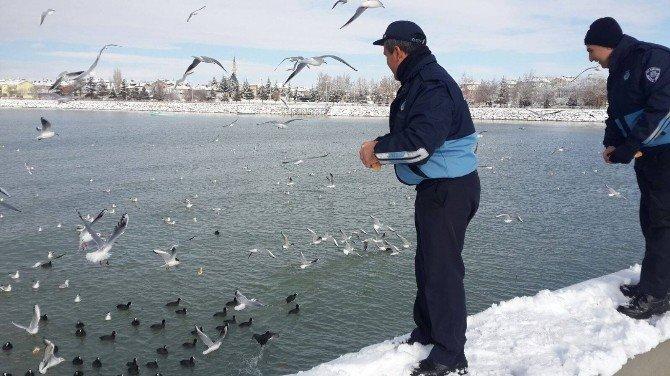 Beyşehir'de Zabıtadan Su Kuşları İçin 'Farkındalık' Mesaisi