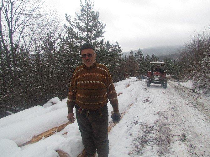 Kar Üstünde Gençleştirme Çalışması