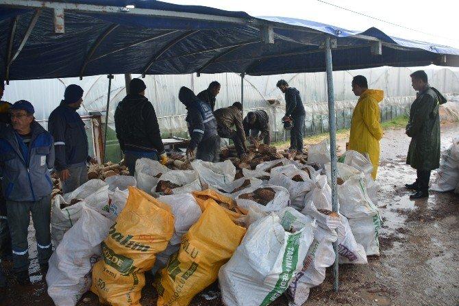 Çiftçiler İçin Resmi Yardım Talebinde Bulunuldu
