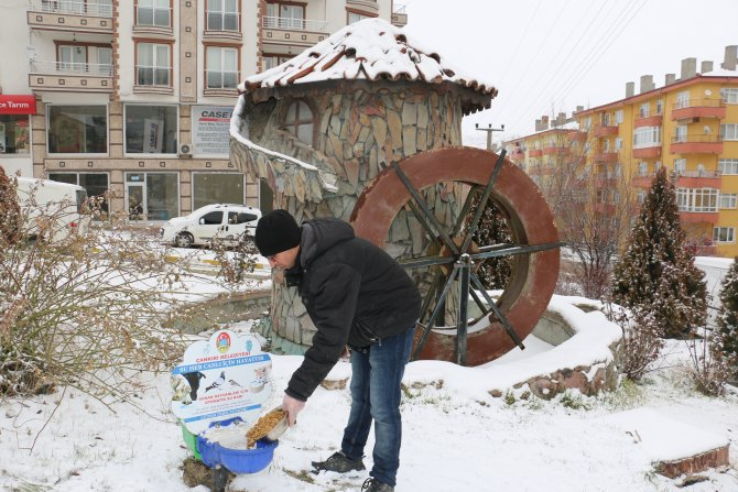 Sokak hayvanları için kuru mama dağıtımı yapıldı