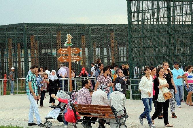 Büyükşehir'den Karne Hediyesi
