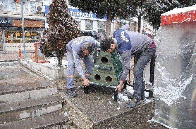 Bozüyük Belediyesi'nden Kedilere Sıcak Yuva