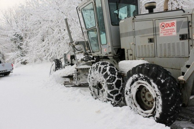 Karla Mücadele Çalışmalarında Etkin Rol Alıyorlar