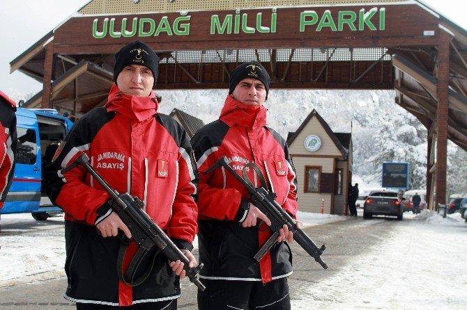 Uludağ'ın Güvenliği Çomak Ve Roket'e Emanet...