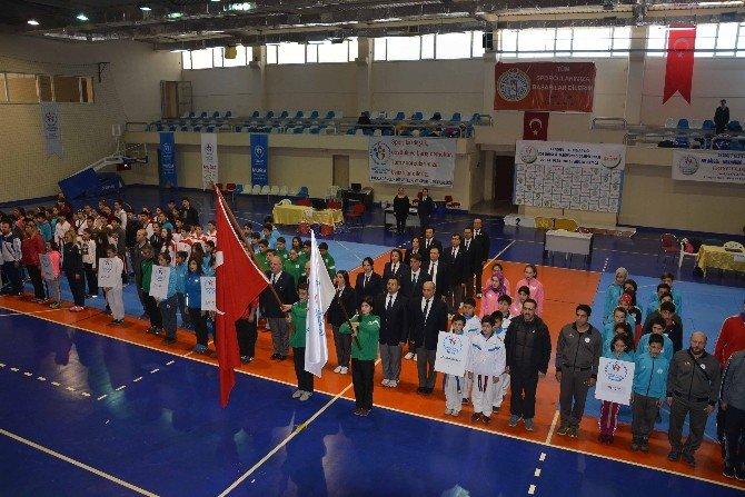 Ege Bölgesi Taekwondo Şampiyonası Muğla'da Yapıldı