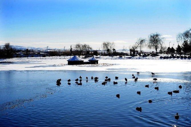 Beyaza Bürünen Mogan Gölü Görsel Şov Sunuyor