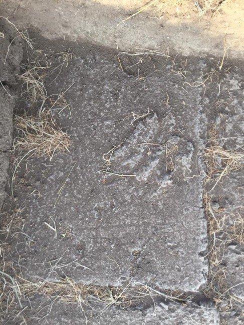 Bilge Tonyukuk Kazılarında Bin 300 Yıllık Parmak İzi