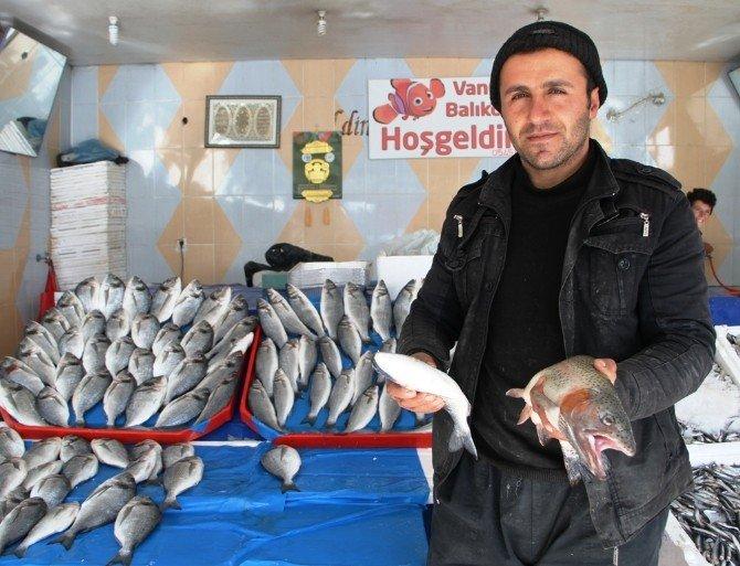 Van'da Balık Satışları Arttı