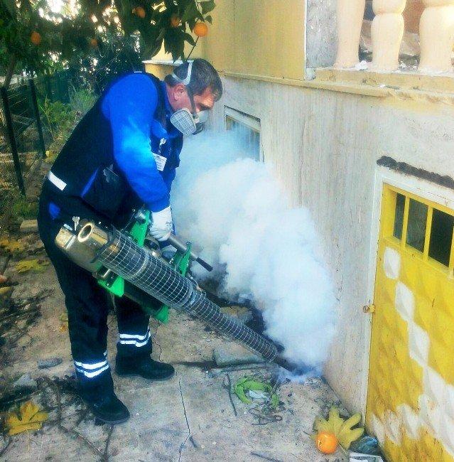 Büyükşehir'in Haşereyle Mücadelesi Sürüyor