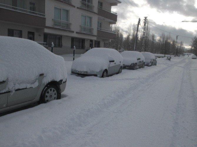 Varto'da Kar Yağışı