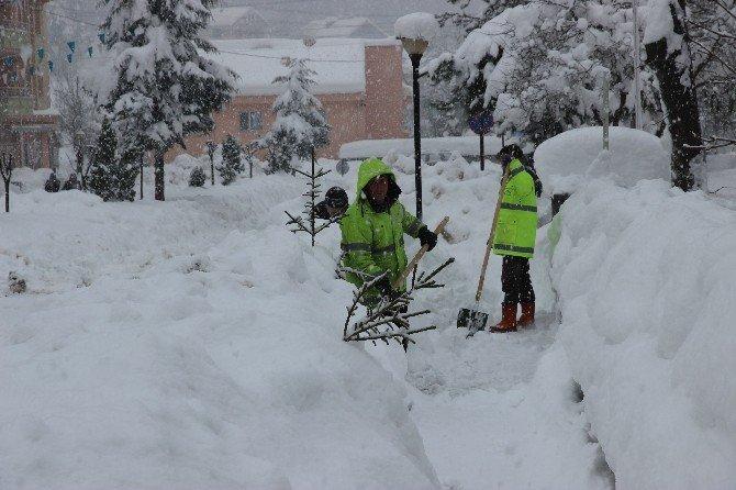 Yığılca Belediyesi'nden Örnek Kar Çalışması