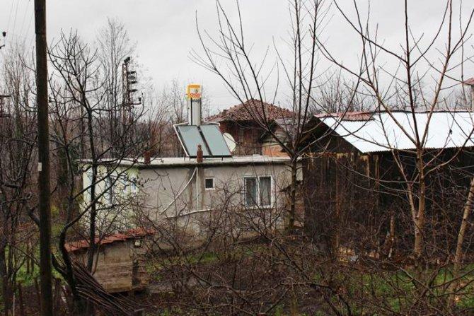 Ağaç kesilmesin diye 'güneş enerji sistemi' kredisi verildi