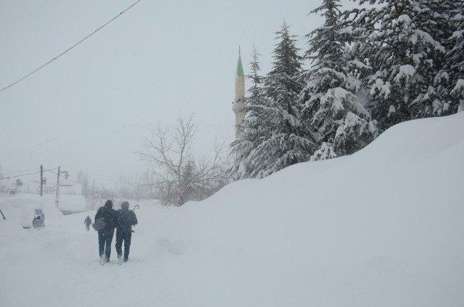 Bitlis'te 256 Köye Ulaşım Sağlanamıyor