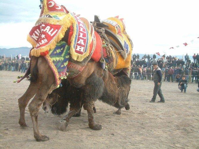 Burhaniye'de Hafta Sonu Festival Var
