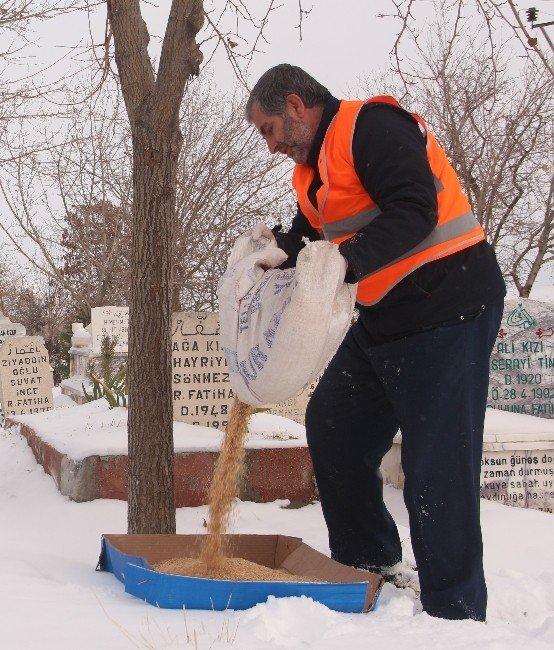Elazığ'da Kuşlar İçin 1 Ton Yem Bırakıldı