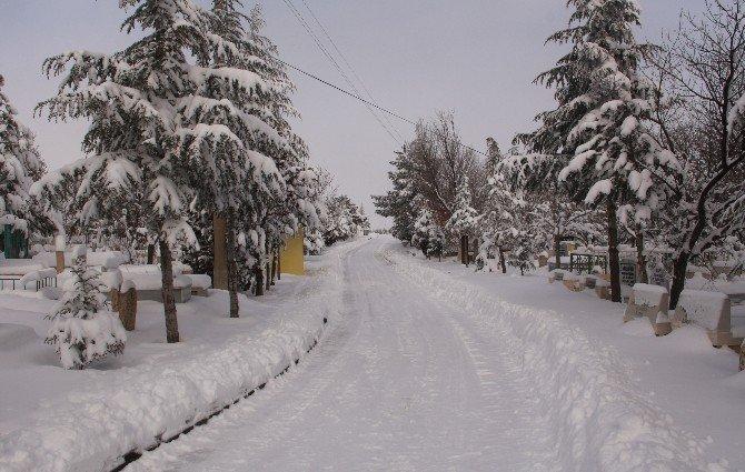 Elazığ'da Kar Nedeniyle 309 Köye Ulaşım Sağlanamıyor