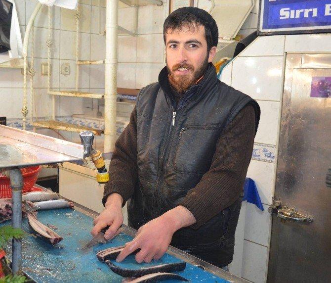 Malatya Balık Pazarında Hamsi Bereketi Yaşanıyor