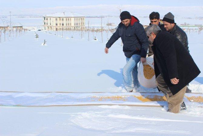 Muş'ta üniversitenin akademik ve idari personeli doğaya yem bıraktı