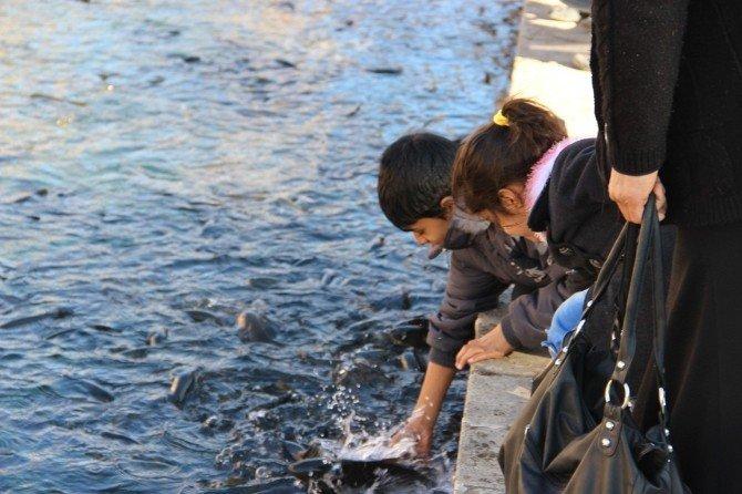 Güneş Yüzünü Gösterince Vatandaşlar Balıklıgöl'e Akın Etti