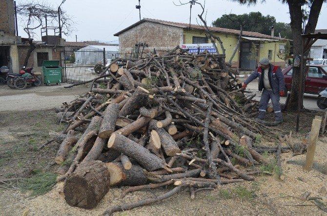 Turgutlu Belediyesi'nden Yardıma Muhtaçların Evlerini Isıtan Çalışma