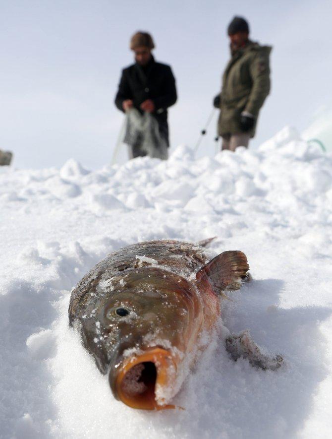 Çıldır Gölü'nün uçan balıkları bunlar!