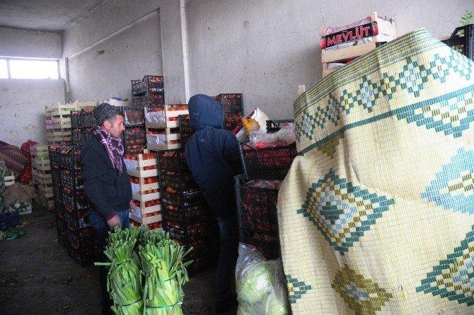 Meyve Ve Sebzelere Battaniyeli Koruma