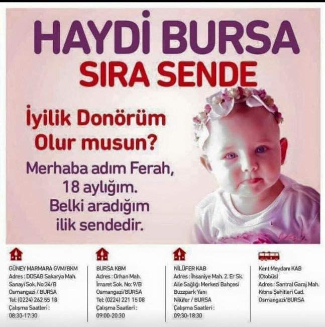 Bursalılar Ferah Bebek İçin Seferber Oldu