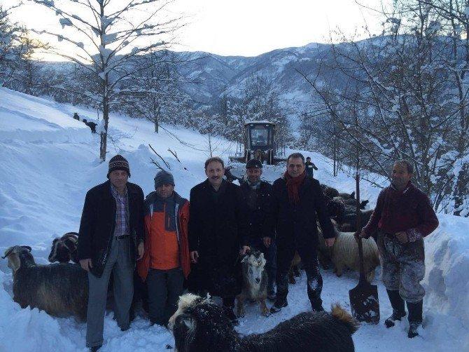 Karda Mahsur Kalan Çoban Ve 300 Küçükbaş Hayvanı Kurtarıldı
