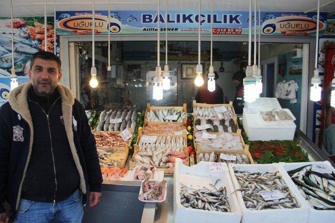 Vatandaş Ucuz Balık İçin Bekleyecek