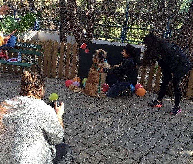 Büyükşehir'den 'Engelsiz Sevgi Projesi'