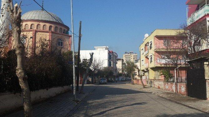 Efeler Belediyesi Ağaçları Bahara Hazırlıyor