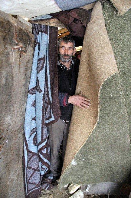 Kış Günü Naylonla Kaplı Barakada Yaşıyor