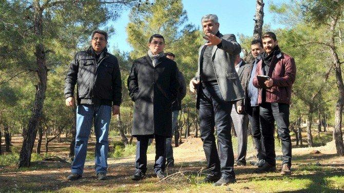 Tütüncü, Kepez Park Orman Projesini İnceledi