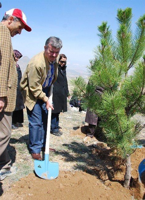 Konya'da Bir Yılda 7 Milyon Fidan Toprakla Buluştu
