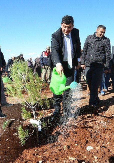 'Bi Dünya Yeşil' Şehitkamil İle Büyüyor