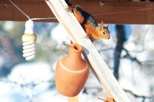 Sincaplar, Yaka Manastır'a gelen ziyaretçileri hayran bırakıyor