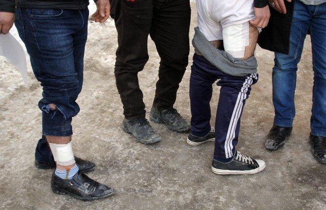 Polis Noktasında Köpek Saldırısı: İki Yaralı