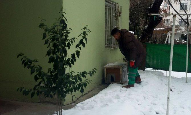 Gaziosmanpaşa'ya kedi evi