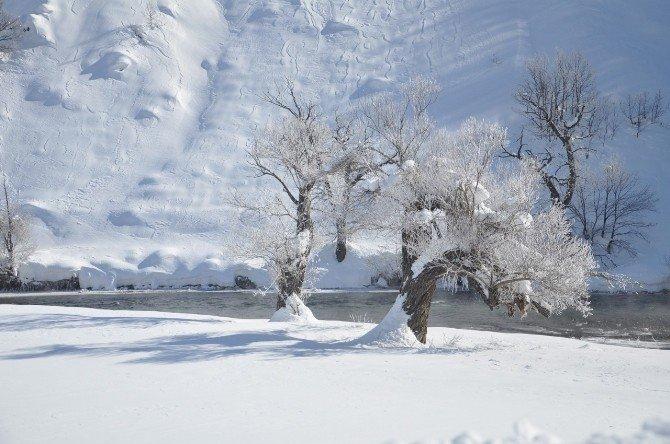 Ovacık'ta Kar Kalınlığı 2 Metreyi Aştı