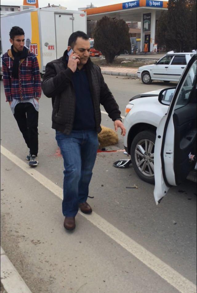 Otomobil sürüye daldı: 5 koyun telef oldu